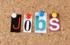 Work & Travel USA – Die besten Jobs